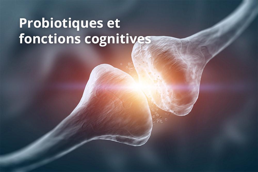 Des probiotiques à haute concentration pour améliorer la fonction cognitive