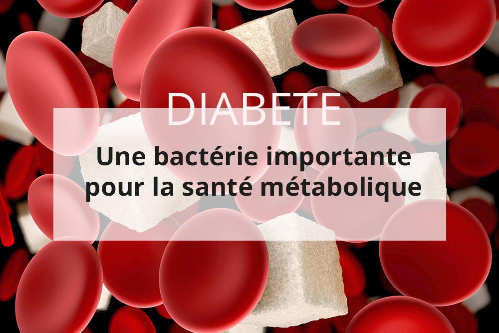 La modulation du microbiote intestinal pour améliorer la santé des patients diabétiques