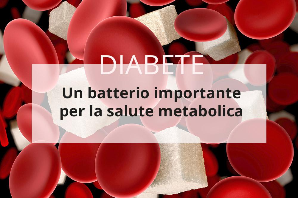 Una modifica del microbiota intestinale migliora i pazienti diabetici