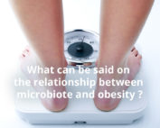 The intestinal flora at the heart of our understanding of obesity?