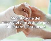 Probiotici in aiuto dei malati di Parkinson